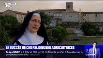 Le succès de ces religieuses agricultrices qui ont lancé un appel pour financer leur ferme