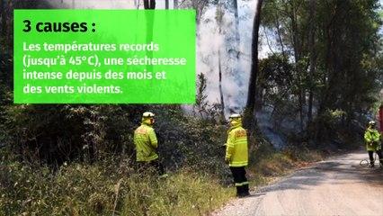 Australie : Pourquoi les flammes ravagent-elles le pays ?