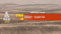 Dakar 2020 - Étape 10 / Stage 10 - Landscape of the day