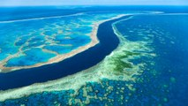 Why It's More Important Than Ever to Visit Australia's Great Barrier Reef