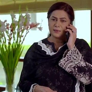 Thora Sa Haq Ary Drama Episode 13 Of 15 Jan 2019