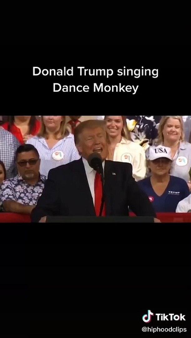 Donald trump dance monkey