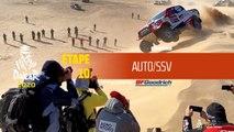 Dakar 2020 - Étape 10 (Haradh / Shubaytah) - Résumé Auto/SSV