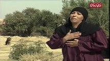 المسلسل البدوي الدخيلة الحلقة 8