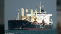 한국인 태운 선박 2척 인도네시아서 나포...13명 억류 / YTN