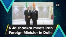 S Jaishankar meets Iran Foreign Minister  Javad Zarif in Delhi