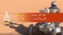 داكار 2020 - المرحلة 11 (Shubaytah / Haradh) - ملخص فئة الدرّاجات النارية/ كواد
