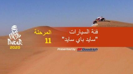 داكار 2020 - المرحلة 11 (Shubaytah / Haradh) - ملخص فئة السيارات  / سايد باي سايد