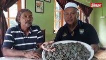 Pemburu harta karun jumpa 2kg syiling lama