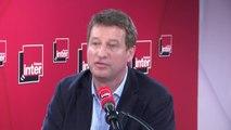 """Yannick Jadot : """"Ségolène Royal a une cohérence que parfois je pense qu'elle est la seule à comprendre, dans le schéma politique"""""""