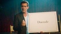 Antonio Banderas Translates Spanish Phrases | Surprise Showcase