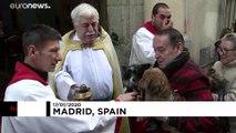 Evcil hayvanlara kilisede kutsama merasimi