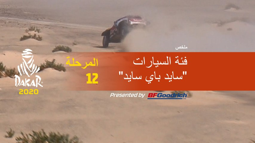 داكار 2020 - المرحلة 12 (Haradh / Qiddiya) - ملخص فئة السيارات  / سايد باي سايد