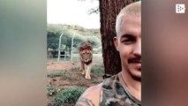Un hombre y su león juegan al escondite en Sudáfrica