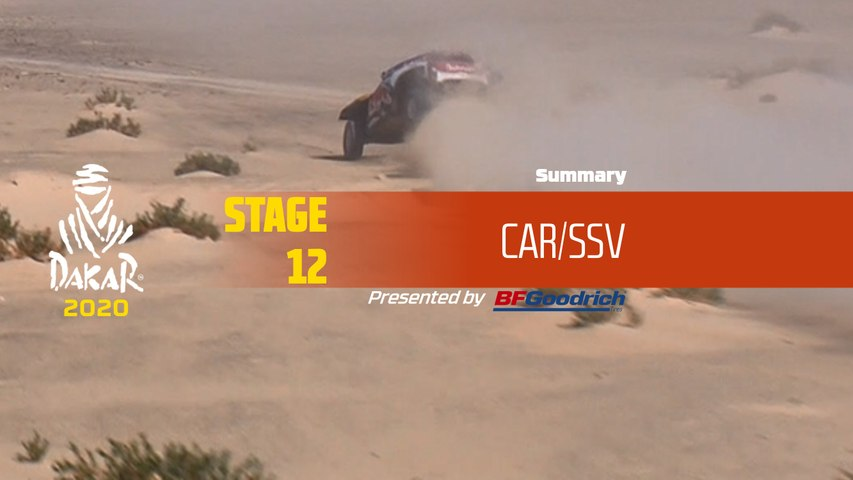 Dakar 2020 - Stage 12 (Haradh / Qiddiya) - Car/SSV Summary