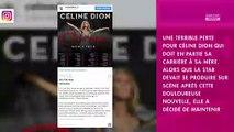 Céline Dion en deuil : la chanteuse rend hommage à sa mère décédée