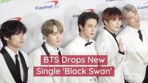 BTS Debuts 'Black Swan'