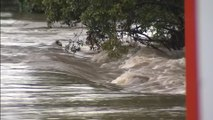 Storms douse some of Australia's bushfire-hit areas