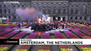 Amsterdam marks National Tulip Day with free flowers