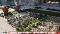 Avignon : les jardins du Palais des Papes inaugurés hier