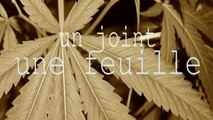#Unjointunefeuille #Rachiday - Interrogatoire