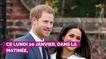 Le prince Harry pose un lapin à son frère William pour retrouver Meghan et Archie au Canada