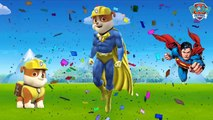 Kids Play Paw Patrol Turn Into Spiderman and Superman Colros Toys For Kids And Babies