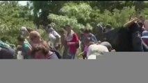 María Amparo Casar   EU ya ha suprimido el asilo para centroamericanos y mexicanos