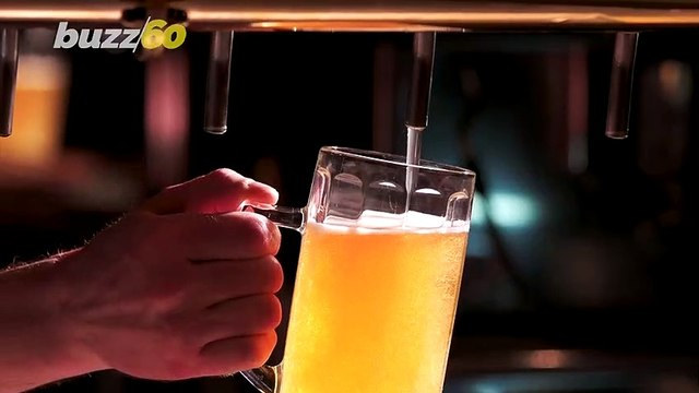License To Chill! Man Files Beer As Emotional Support Animal!