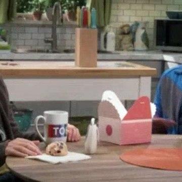 The Big.Bang Theory Season 11 Episode 7 The Geology Methodology