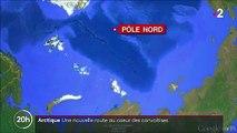 Arctique : une nouvelle voie commerciale très convoitée
