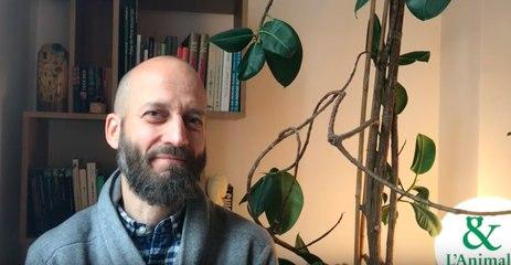 Interview 5 de Olivier Piazza : Les nuées d'oiseaux pour diriger une équipe