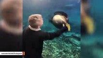 This Boy Won't Forget His Trip To The Aquarium