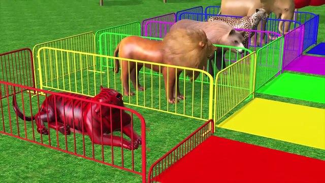 Los animales de granja y sus crías se transforman en animales salvajes en piscine