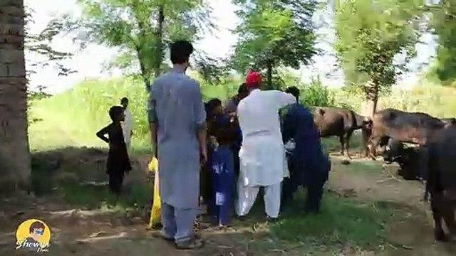Mirdal Kassab Ow Doctor Saab - Akhtar De Mubarak Sha - Kassab Ow Palambar Pashto Funny Videos