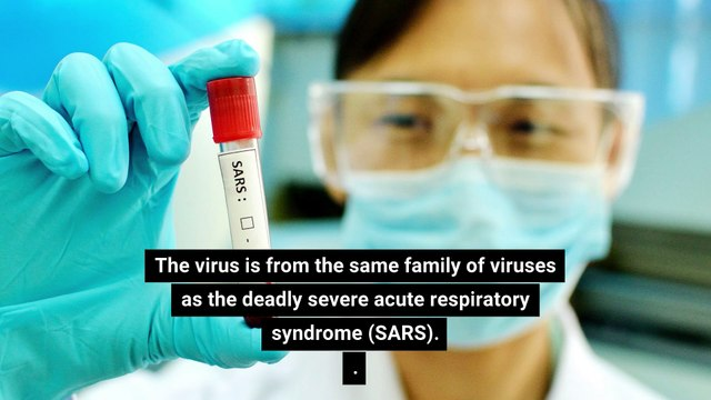 What is coronavirus? The SARS-like virus from China