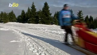 Mush Madness! Dog Sledders From Around Europe Gather in Czech Republic fpr Race!