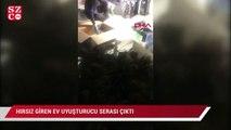 Hırsız giren ev uyuşturucu serası çıktı