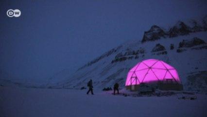 شبيتسبرغن: زراعة الخضروات في منطقة قطبية