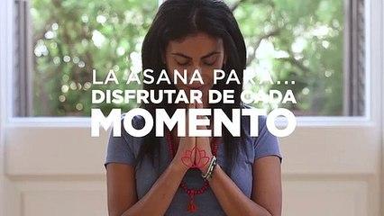 Asana para disfrutar de cada momento Yoga con Or Haleluiya 1x05