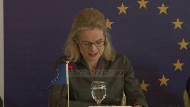 """""""Zgjedhjet ishin transparente""""/ Vëzhguesit e BE vlerësojnë procesin zgjedhor në Kosovë"""