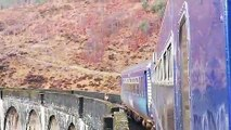 Baby deer offered escape from train crash danger with lowered fences