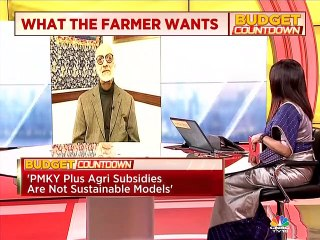 Budget Countdown: Need to prioritise agricultural investments, says agriculture economist Ashok Gulati
