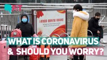 Even Your Common Cold is a Coronavirus And Other Facts to Know   The Quint