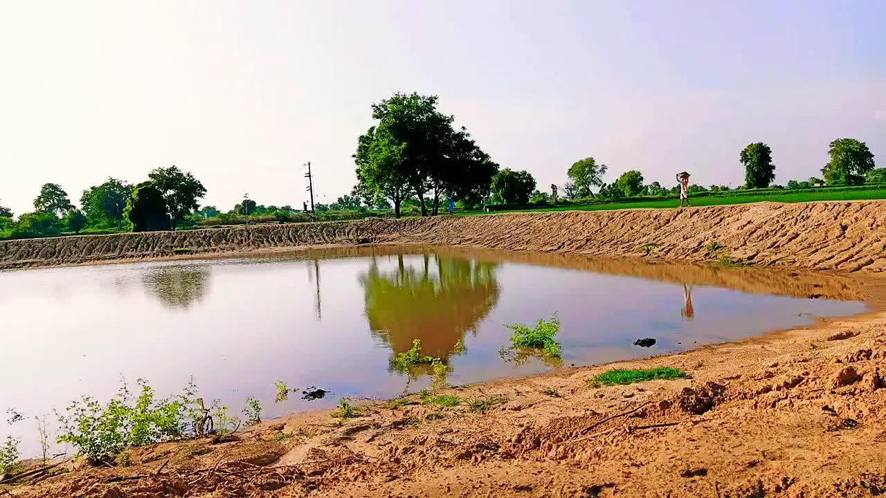 मछली पालन का तालाब कैसे तैयार करें |  -how to prepare fish pond,how to make fish pond