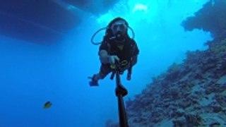 El pulmón que permite respirar bajo el agua