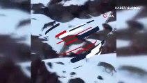 Yaban keçisi kurt sürüsünün arasına böyle daldı