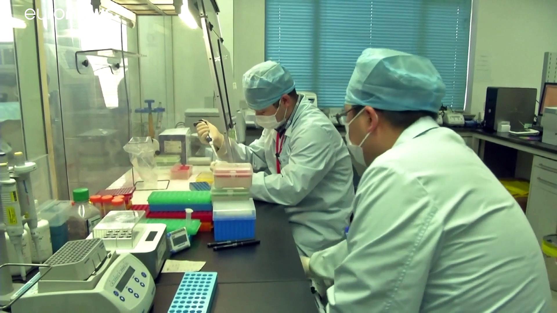 Unión de fuerzas en busca de una vacuna para el 'coronavirus de Wuhan'