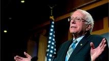 Why Trump Wants To Run Against Bernie