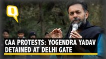 CAA Row: Yogendra Yadav, Prashant Bhushan Detained at Delhi Gate | The Quint